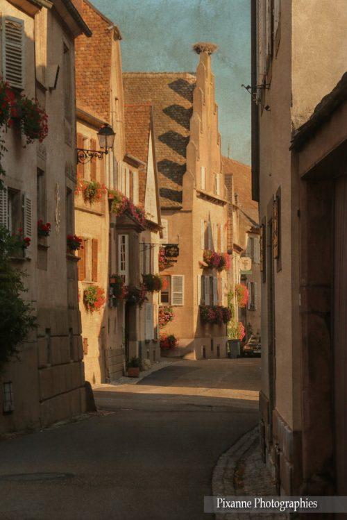 France, Alsace, Route des Vins, Mittelbergheim, Alsace et Moi, Pixanne Photographies