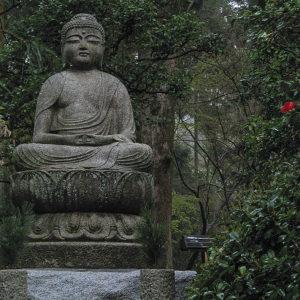 Asie, Japon, Kyoto, Ryoan Ji, Souvenirs de Voyages, Pixanne Photographies
