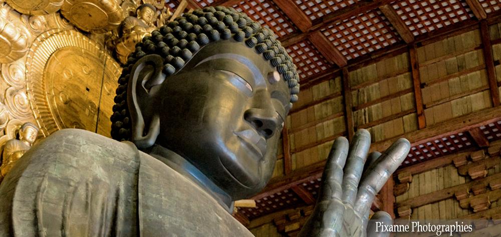 Asie, Japon, Nara, Todai Ji, Daibutsu, Souvenirs de Voyages, Pixanne Photographies