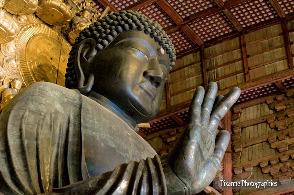 Asie, Japon, Nara, Todai Ji, Daibutsu, Bouddha Vairocana, Souvenirs de Voyages, Pixanne Photographies