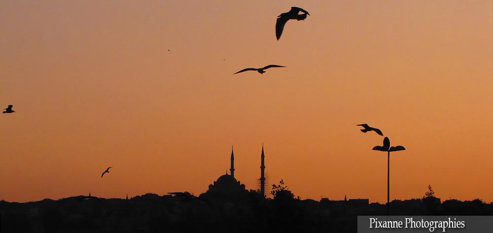 Asie, Turquie, Istanbul, Souvenirs de Voyages, Pixanne Photographies