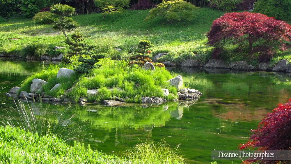 Europe, France, Occitanie, Gard, Anduze, Bambouseraie, Jardin Japonais, Le Vallon du Dragon, Souvenirs de Voyages, Pixanne Photographies