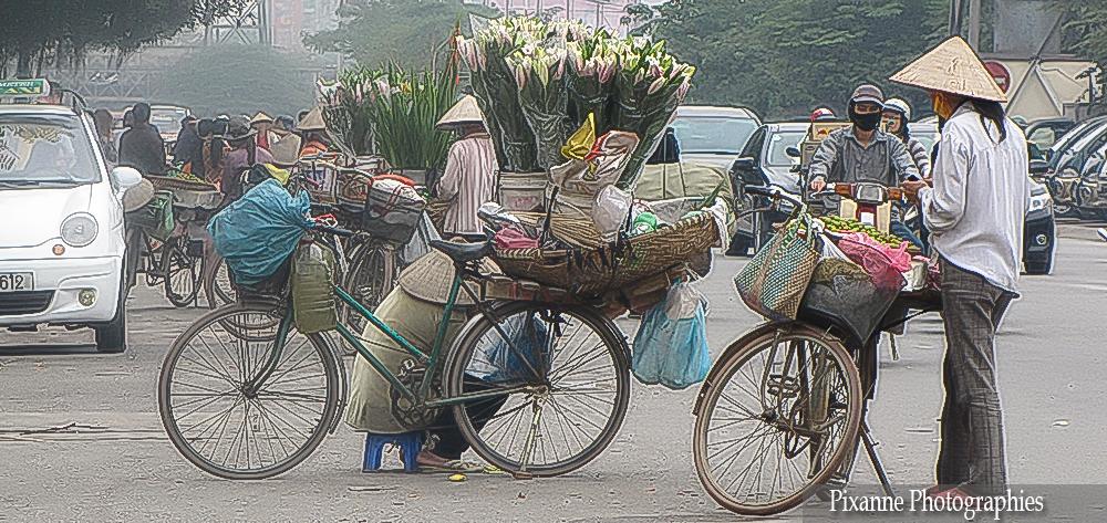 Asie, Vietnam, Hanoï, Souvenirs de Voyages, Pixanne Photographies