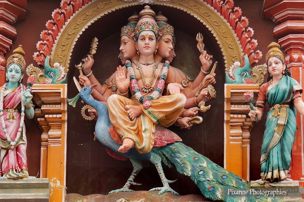 Asie, Kapaleeshwar Temple, Chennai, Inde du Sud, Pixanne Photographies, Souvenirs de Voyages, Tamil Nadu