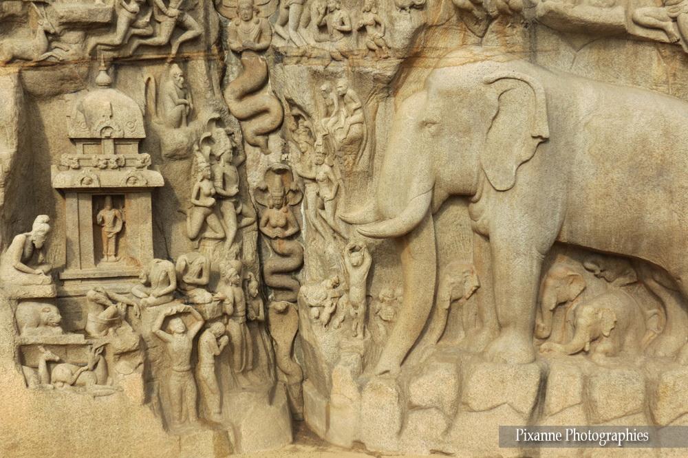 Asie, Inde du Sud, Tamil Nadu, Mahabalipuram, Descente du Gange, Arjunas penance, Souvenirs de Voyages, Pixanne Photographies