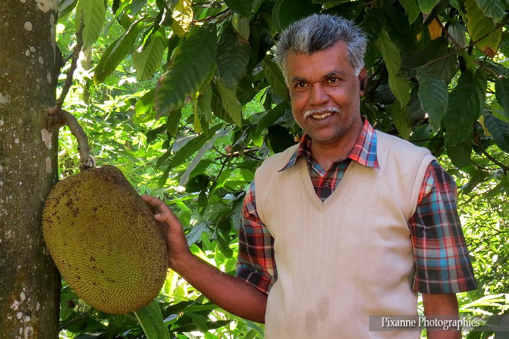 Asie, Inde du Sud, Kerala, Kumily, Abraham's Spice Garden, Souvenirs de Voyages, Pixanne Photographies