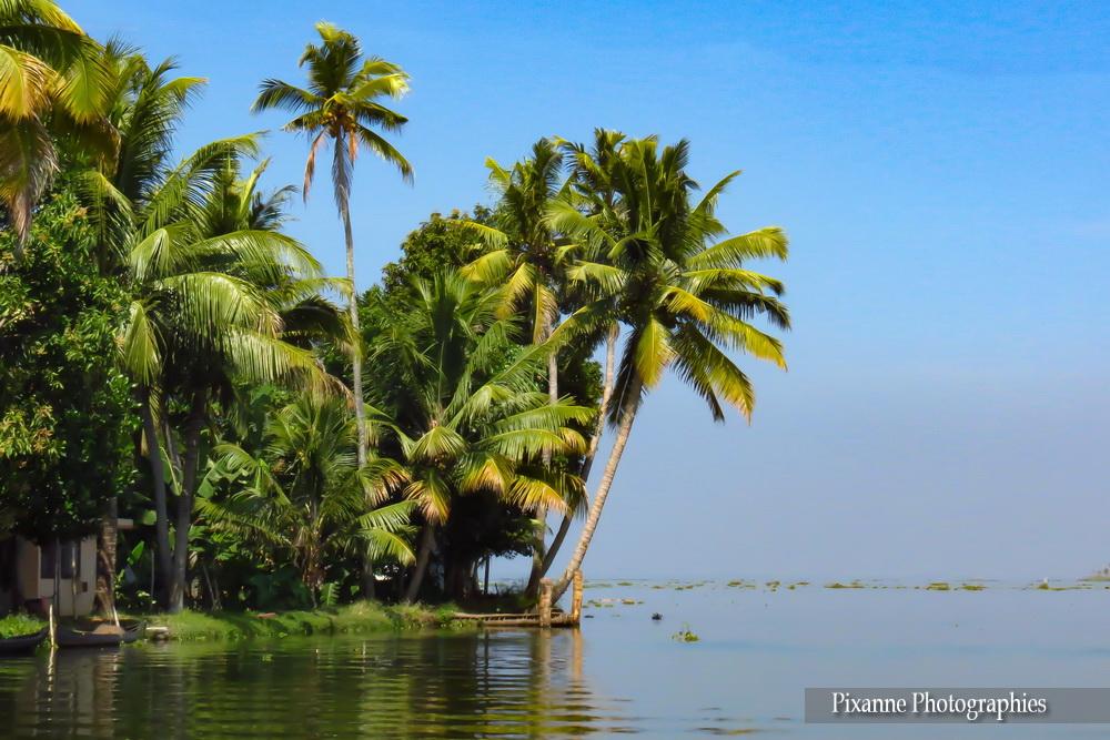 Asie, Inde du Sud, Kerala, Backwaters, Lac Vembanad, Souvenirs de Voyages, Pixanne Photographies