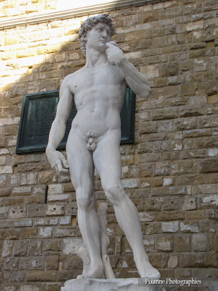 Europe, Italie, Florence, Piazza della Signoria, David, Michel Ange,  Souvenirs de Voyages, Pixanne Photographies