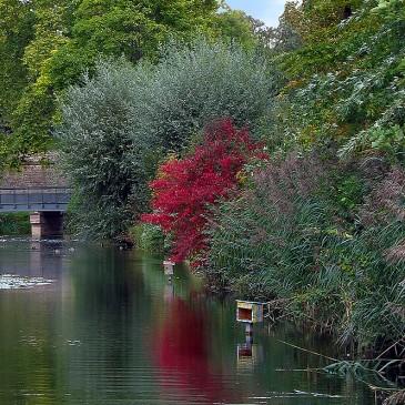 Strasbourg * Le Parc de la Citadelle