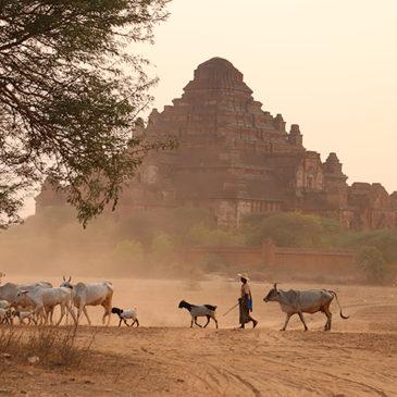 Myanmar J11 . Bagan