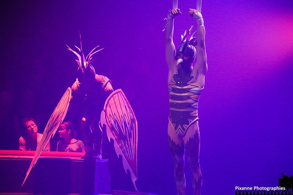 Cirque Arlette Gruss 2014_0008