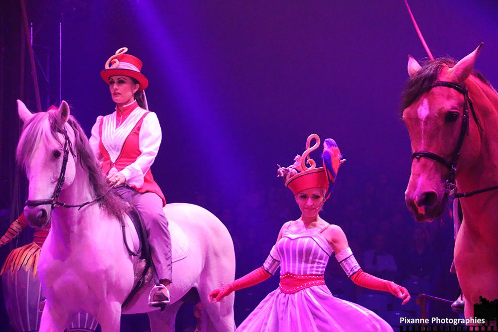 Cirque Arlette Gruss 2015_002