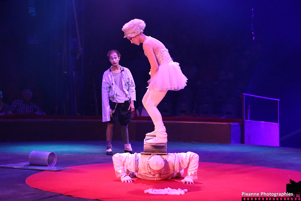 Cirque Arlette Gruss 2015_007