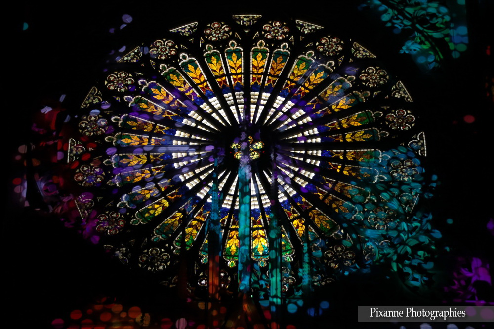 France, Alsace, Strasbourg, Illuminations Cathédrale, Pixanne Photographies