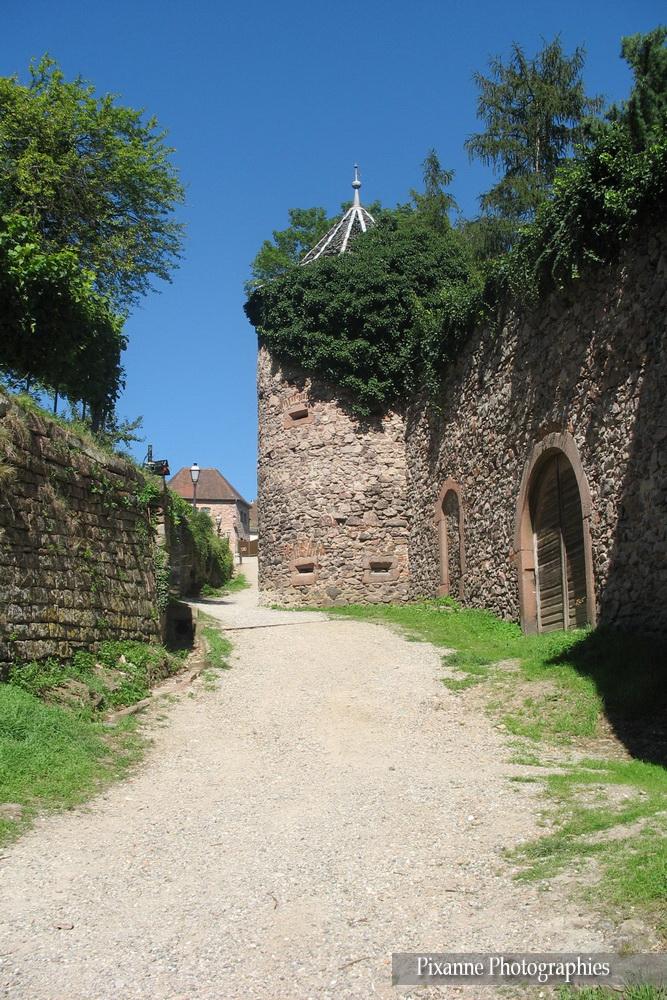Alsace, Route des vins, Ribeauvillé, Tour des Sorcières, Alsace et Moi, Pixanne Photographies