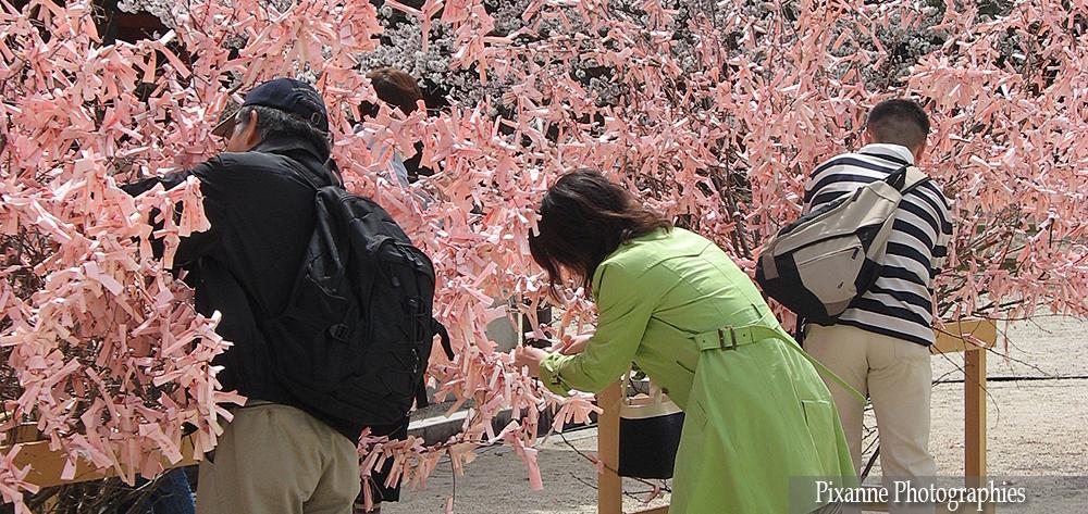 Asie, Japon, Kyoyo, Heian Shrine, Omikuji, Souvenirs de Voyages, Pixanne Photographies