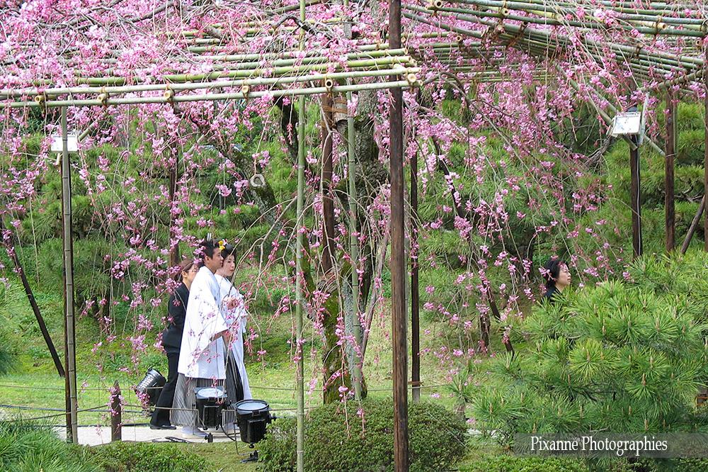 Asie, Japon, Kyoto, Heian Shrine, Mariage, Souvenirs de Voyages,  Pixanne Photographies