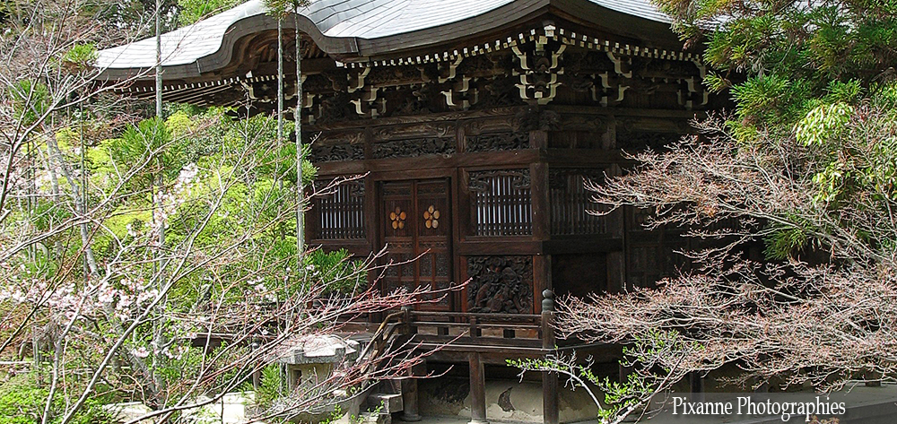 Asie, Japon, Arashiyama, Seiryoji, Souvenirs de Voyages, Pixanne Photographies