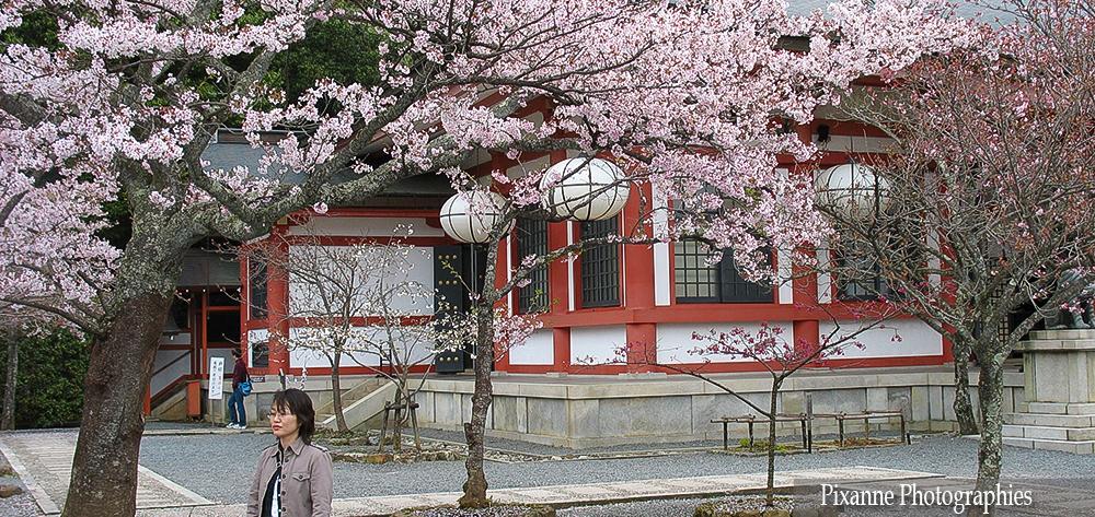 Asie, Japon, Mont Kurama, Souvenirs de Voyages, Pixanne Photographies