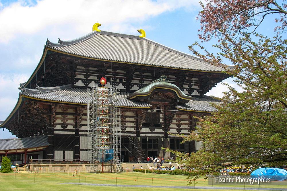 Asie, Japon, Nara, Todai Ji, Souvenirs de Voyages, Pixanne Photographies