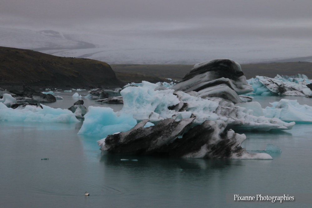 Europe, Islande, Islande du Sud, Jokulsarlon,Jökulsárlón, Breidamerkurjokull, Breiðamerkurjökull, Souvenirs de Voyages, Pixanne Photographies