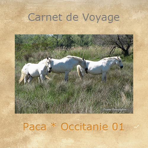 Europe, France, Paca, Occitanie, Souvenirs de Voyages, Pixanne Photographies