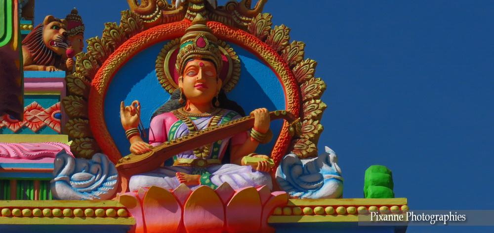 Inde du Sud_4602